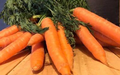 Die Maro'sche Karottensuppe