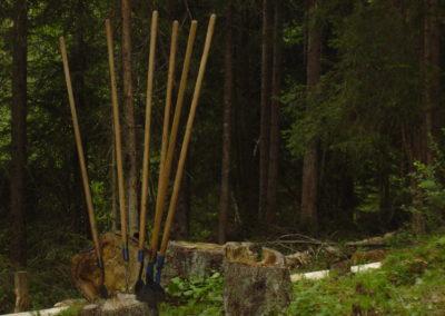 Wald Werkzeug